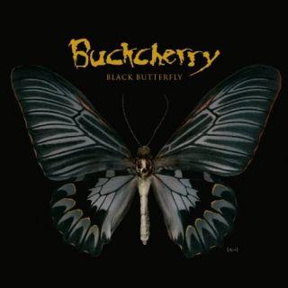 blackbutterfly